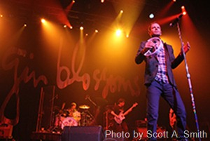 gin-blossoms-by-scott-a-smith